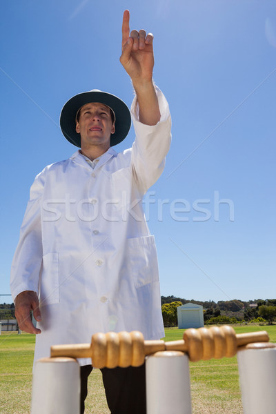 Confident umpire raising finger at field during match Stock photo © wavebreak_media