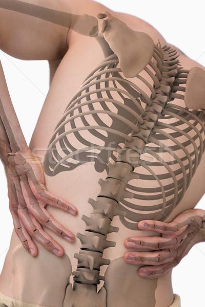 Digital composite Wirbelsäule Mann Rückenschmerzen weiß Team Stock foto © wavebreak_media