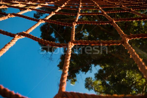 Net Seil Hindernisstrecke Himmel Internet Stock foto © wavebreak_media