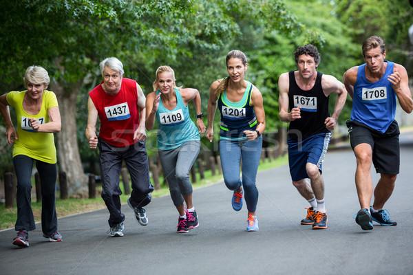 Maratona line parco donna albero Foto d'archivio © wavebreak_media