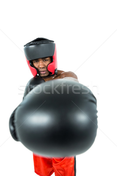 Боксер белый бокса мужчины Сток-фото © wavebreak_media