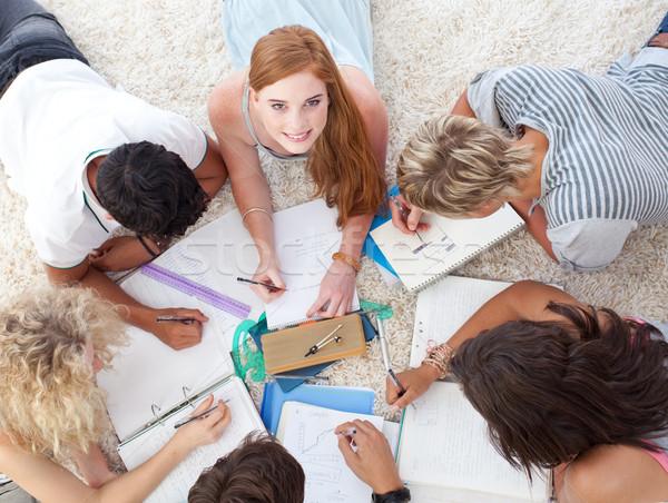代 宿題 一緒に 階 家 少女 ストックフォト © wavebreak_media