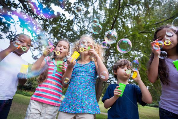 Kicsi barátok buborékfújás park napos idő lány Stock fotó © wavebreak_media