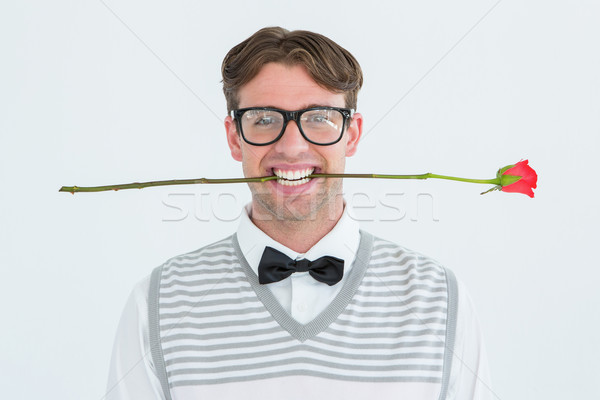 Geeky hipster holding a red rose in his teeth Stock photo © wavebreak_media