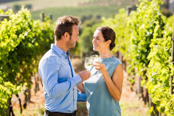Verres à vin vignoble vin Photo stock © wavebreak_media