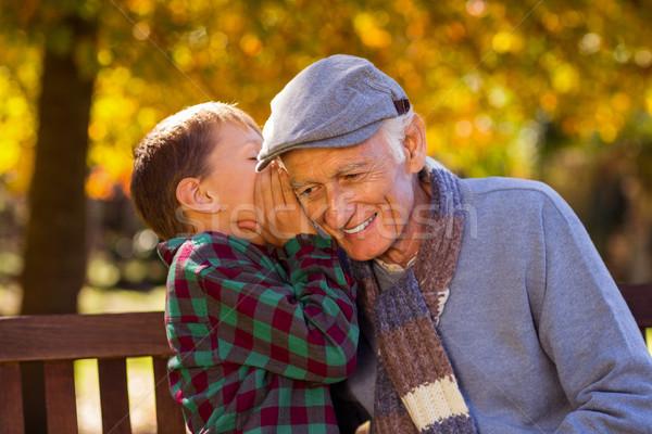 Grandson whispering to grandfather Stock photo © wavebreak_media