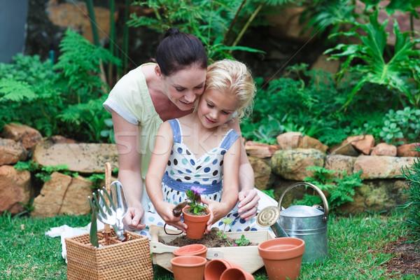 özenli anne sevimli kız bahçe bitki Stok fotoğraf © wavebreak_media