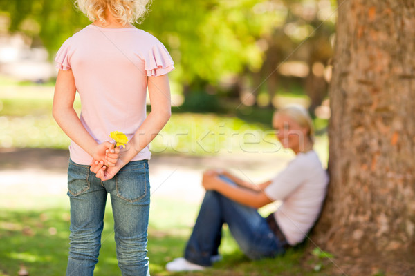 Daughter offering a flower to her mother Stock photo © wavebreak_media