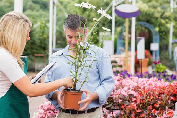 Asszisztens segít vásárló választ növény kert Stock fotó © wavebreak_media