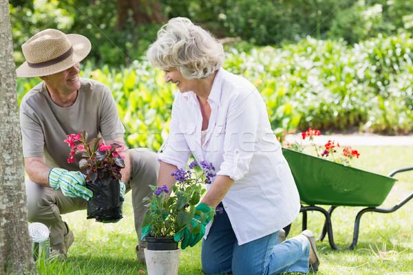 Couple engaged in gardening Stock photo © wavebreak_media