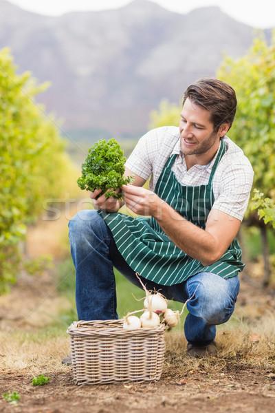 Jeunes heureux agriculteur regarder légumes domaine Photo stock © wavebreak_media