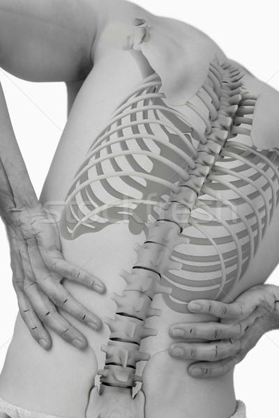 Digital composite kręgosłup człowiek biały zespołu Zdjęcia stock © wavebreak_media