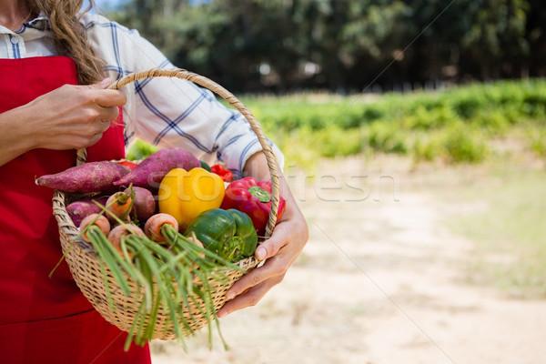 Középső rész nő tart kosár friss zöldségek szőlőskert Stock fotó © wavebreak_media