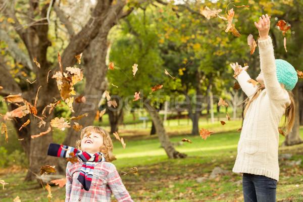 Boldog testvérek park lány gyermek zöld Stock fotó © wavebreak_media