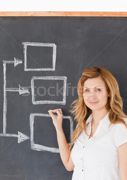 Cute female teacher drawing a scheme on a blackboard Stock photo © wavebreak_media