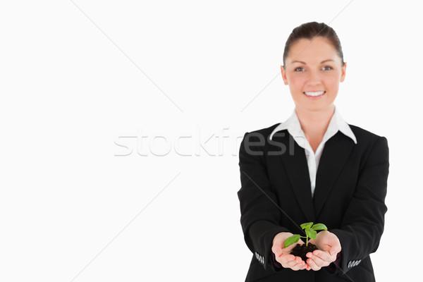 Jól kinéző nő öltöny tart kicsi növény Stock fotó © wavebreak_media