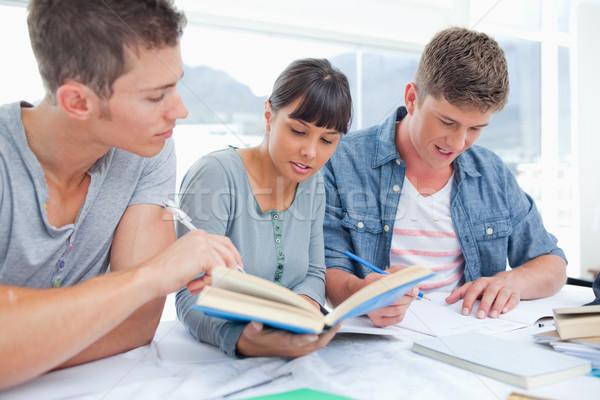 Stock foto: Lächelnd · Gruppe · Studenten · ein · Buch