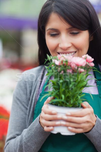 çiçekçi çiçek bahçe merkez işçi Stok fotoğraf © wavebreak_media