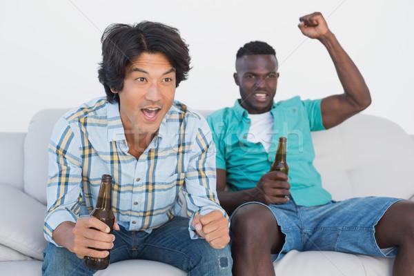 Piłka nożna fanów oglądania telewizja dwa Zdjęcia stock © wavebreak_media