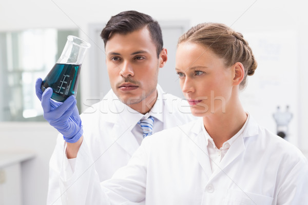 Concentrated scientists holding beaker with fluid Stock photo © wavebreak_media