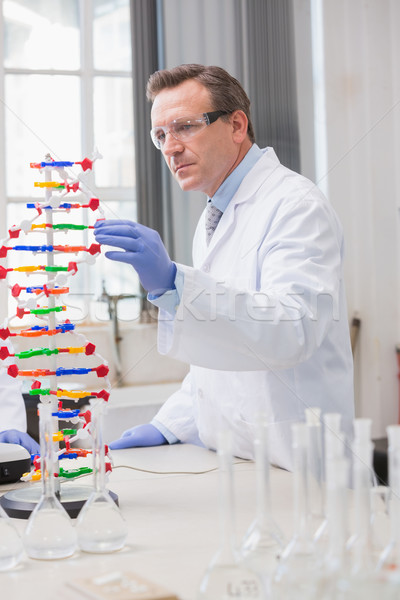 Scientist analysing dna helix  Stock photo © wavebreak_media