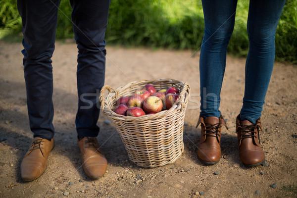 Low section of couple standing by apples in wicker basket on field Stock photo © wavebreak_media