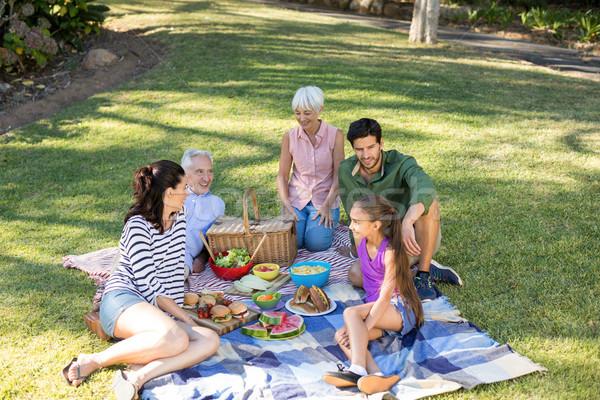 Boldog család piknik park napos idő nő lány Stock fotó © wavebreak_media