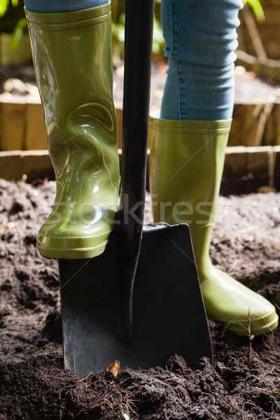 Low section of woman standing with shovel on dirt Stock photo © wavebreak_media