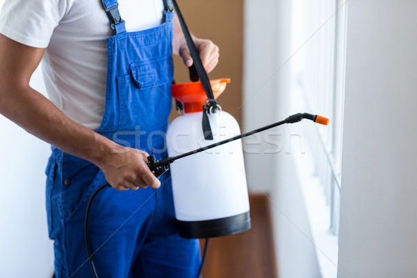 Midsection of pest control worker with sprayer Stock photo © wavebreak_media