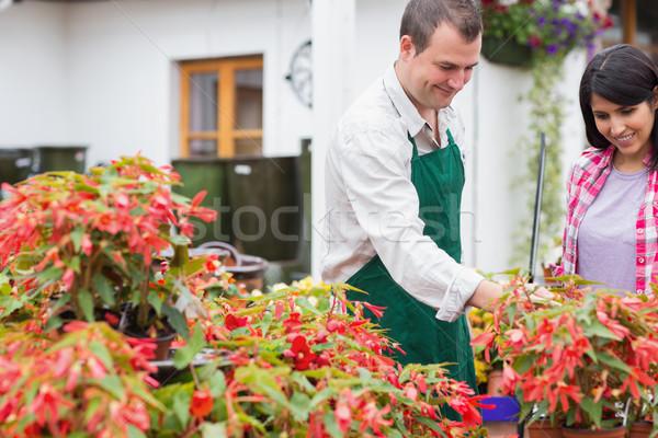 Vásárló kert központ munkás megbeszél növények Stock fotó © wavebreak_media