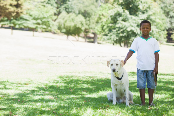 Little boy standing with his pet labrador in the park Stock photo © wavebreak_media