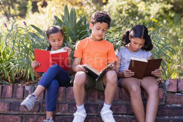 Group of friends reading books while sitting on retaining wall at natural parkland Stock photo © wavebreak_media