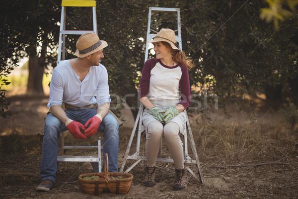 пару говорить сидят оливкового фермы улыбаясь Сток-фото © wavebreak_media