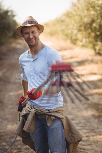 молодые мужчины фермер оливкового грабли Сток-фото © wavebreak_media