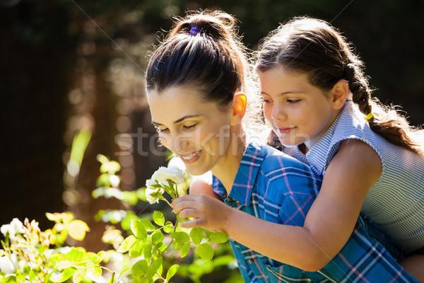Daughter smelling rose with mother while enjoying piggyback Stock photo © wavebreak_media