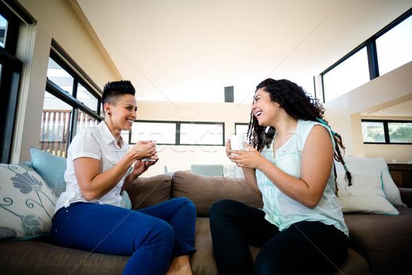 Lesbiennes couple tasse café souriant salon Photo stock © wavebreak_media