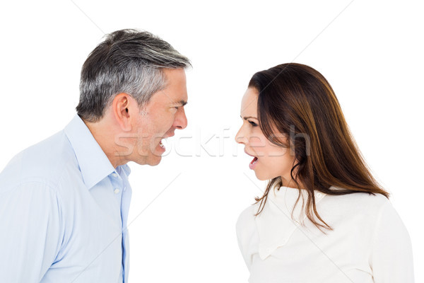 Angry couple arguing Stock photo © wavebreak_media