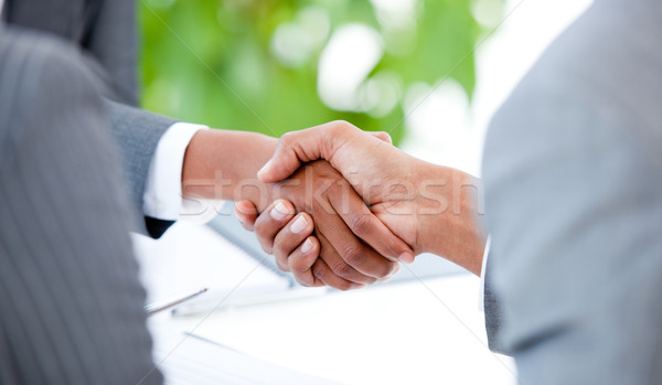 Close-up of an agreement between two businesspeople Stock photo © wavebreak_media