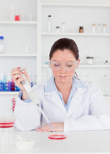 Young scientist preparing a sample Stock photo © wavebreak_media