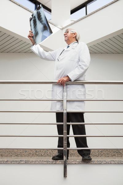 Doctor looking at x-ray leaning against railing in hospital corridor Stock photo © wavebreak_media