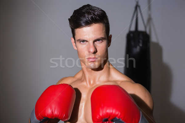Retrato grave muscular boxeador blanco deporte Foto stock © wavebreak_media