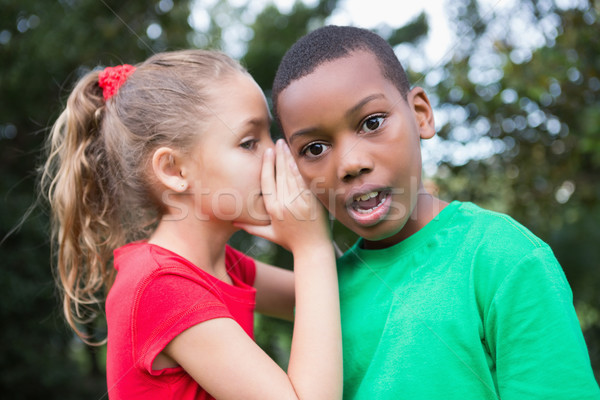 Cute children sharing gossip outside Stock photo © wavebreak_media