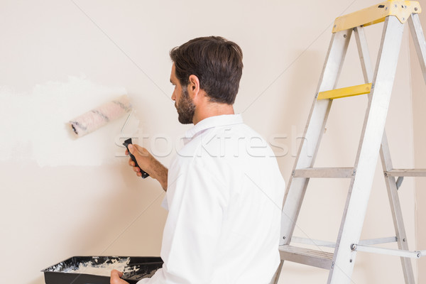 Painter painting the walls white Stock photo © wavebreak_media