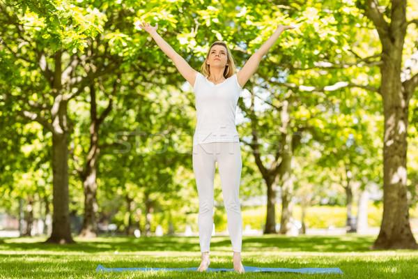 мирный блондинка йога парка весны Сток-фото © wavebreak_media