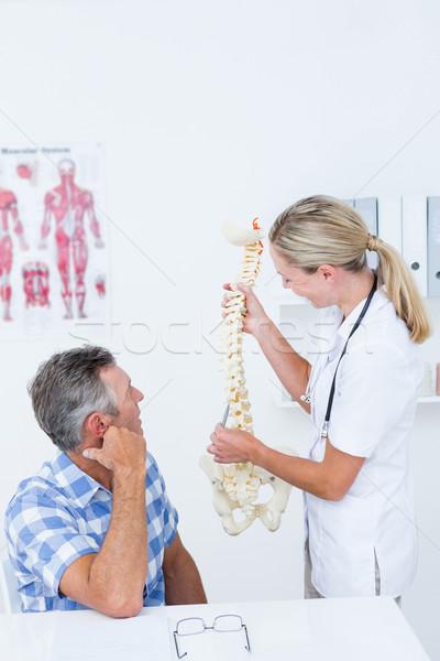врач анатомический позвоночник пациент медицинской Сток-фото © wavebreak_media