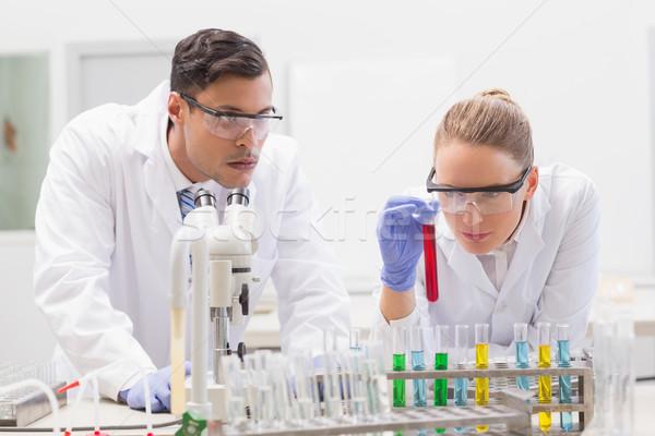 Scienziati tubi laboratorio donna tecnologia Foto d'archivio © wavebreak_media