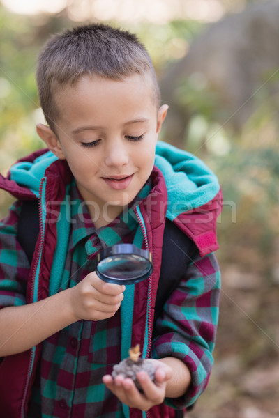 Erkek keşfetmek taş yürüyüş orman küçük Stok fotoğraf © wavebreak_media