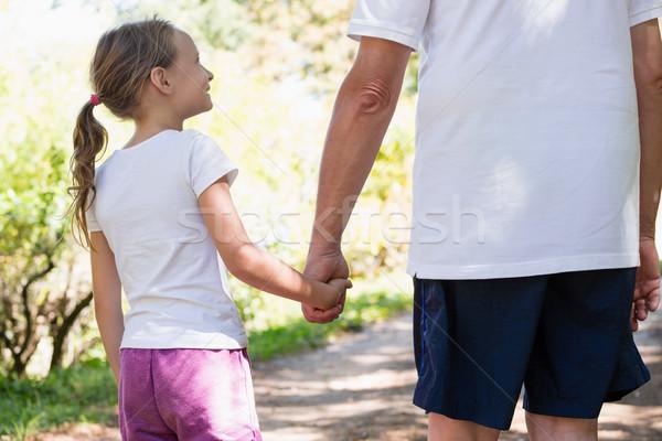 Nonno pronipote holding hands piedi insieme foresta Foto d'archivio © wavebreak_media