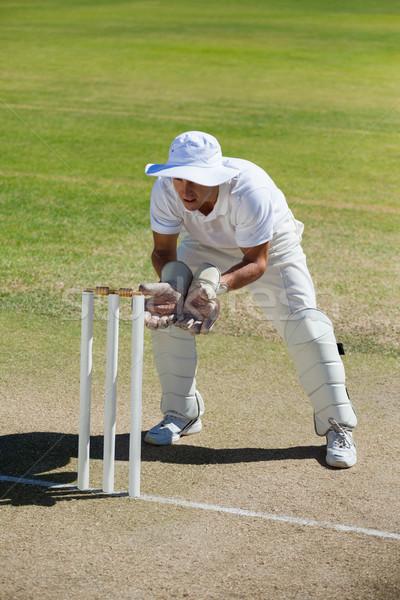 Full length of wicketkeeper standing behind stumps on field Stock photo © wavebreak_media