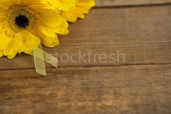 Magasról fotózva kilátás citromsárga tudatosság szalag virágok Stock fotó © wavebreak_media